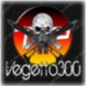 Vegetto300